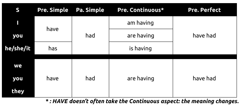 HAVE Conjugation